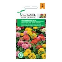 Seminte flori carciumarese uriase AS-PG2