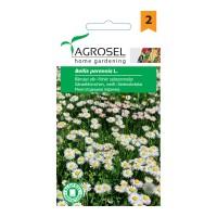 Seminte flori banutei, alb AS-PG2