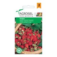 Seminte legume fragute Ruegen AS-PG2