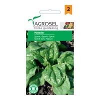 Seminte legume spanac Matador AS-PG2