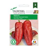 Seminte legume ardei lung Napoca F1 AS-PG3