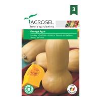 Seminte legume dovleac placintar Orange agro AS