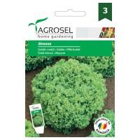 Seminte legume salata creata Alba Simona AS-PG3