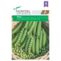 Seminte legume mazare Oltena AS-PG5