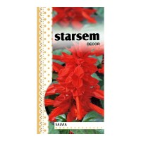 Seminte flori salvia rosu ST-FLO