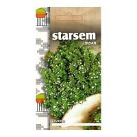 Seminte legume cimbru ST-LG