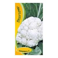 Seminte legume conopida Snowball X ST-LG