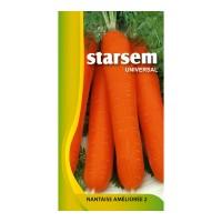 Seminte legume morcovi Nantes2 ST-LG