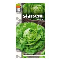 Seminte legume salata White Boston ST-LG