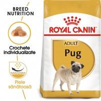 Hrana uscata caine Royal Canin Pug Adult, 1.5 kg