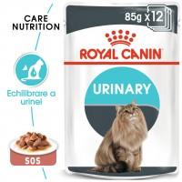 Hrana umeda pentru pisici, Royal Canin, Urinary Care, adult, 12 x 85g