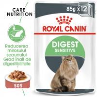 Hrana umeda pentru pisici, Royal Canin, Digestive Sensitive Care, adult, 12 x 85g