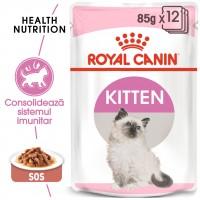 Hrana umeda pentru pisici, Royal Canin, Kitten Instinctive Gravy, junior, 12 x 85g