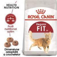Hrana uscata pentru pisici, Royal Canin, Fit 32, adult, 400g