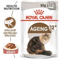 Hrana umeda pentru pisici, Royal Canin, Ageing 12+, senior, 12 x 85g