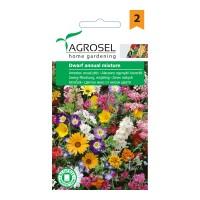 Seminte flori Agrosel, mix anual pitic