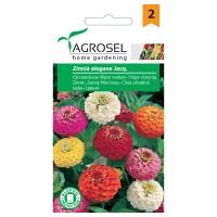 Seminte flori Agrosel, carciumarese