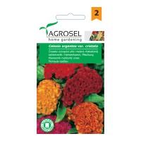 Seminte flori Agrosel, creasta cocosului
