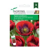 Seminte flori Agrosel, mac de primavara