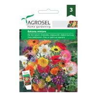 Seminte flori Agrosel, mix pentru balcon