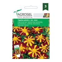 Seminte flori Agrosel, craite pitice, bicolor