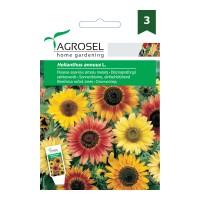 Seminte flori Agrosel, floarea-soarelui decorativa