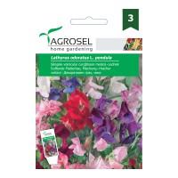 Seminte flori Agrosel, curgatoare, sangele voinicului