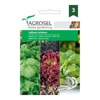 Seminte legume Agrosel, mix salata Lollo Great Lakes Mayking