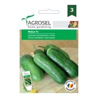 Seminte legume Agrosel, castraveti Metex F1