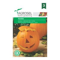 Seminte legume Agrosel, dovleac Howden