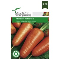 Seminte legume Agrosel, morcovi Chantenay Red Cored 2