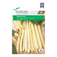 Seminte legume Agrosel, fasole Aurie de Turda