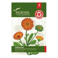 Seminte plante medicinale Agrosel, galbenele