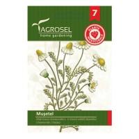 Seminte plante medicinale Agrosel, musetel