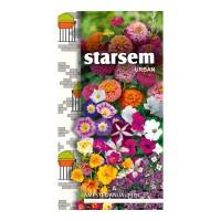 Seminte flori Starsem, mix anuale pitice