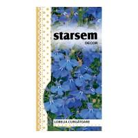 Seminte flori Starasem, lobelia curgatoare, albastru