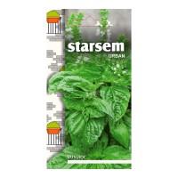 Seminte legume Starsem, busuioc