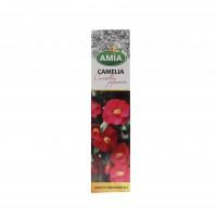Arbust decorativ - Camellia japonica, rosie, Amia 1839