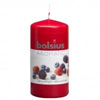 Lumanare decorativa NKS0189, tip stalp, visinie, aroma fructe de padure, 120 / 60 mm