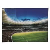 Tablou PP26101, stadion, canvas, 75 x 100 cm
