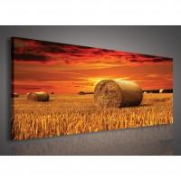 Tablou PP 22503, peisaj, canvas, 45 x 145 cm