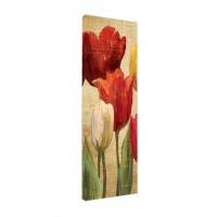 Tablou C00319, compozitie cu flori, canvas + sasiu brad, 30 x 90 cm