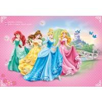 Fototapet copii vlies Disney Princess 198-VE-M 104 x 70.5 cm