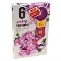 Lumanare tip pastila LP6321, timp ardere 4 ore, aroma orhidee, set 6 bucati