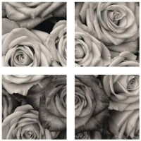 Tablou PT1204 , 4 piese, Trandafiri, canvas + sasiu brad, 40 x 40 cm