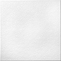 Tavan fals decorativ, polistiren expandat, T101, modern, alb, 50 x 50 x 1 cm