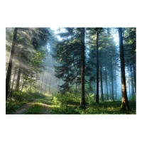 Tablou dualview DTB7343, Drum in padure, canvas + lemn de brad, stil peisaj, 60 x 90 cm