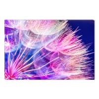 Tablou dualview DTB7831, Papadie, canvas + lemn de brad, 60 x 90 cm
