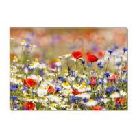 Tablou dualview DTB7975, Camp cu flori, canvas + lemn de brad, stil peisaj, 60 x 90 cm