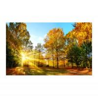 Tablou TA18-PA02112, peisaj, canvas, 50 x 70 cm